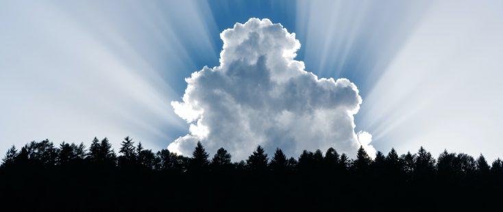 Desktops, Digital Workspace: Transition in die Cloud