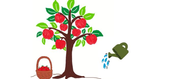 Optimierung, Warum wir im Microsoft-Team plötzlich anfingen von Bäumen und Gießkannen zu reden…